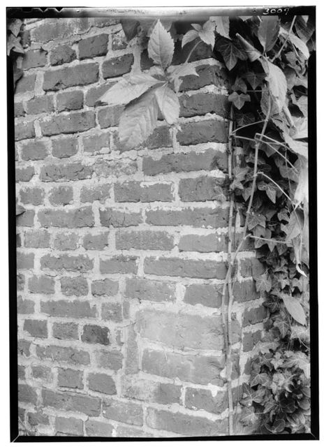 House (Dutch Brickwork Detail), State Route 10, Surry, Surry County, VA