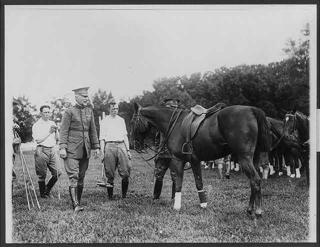 Inspecting the polo ponies before a game at Washington, D.C. General Peyton C. March, Chief of Staff, U.S.A. shown in foreground