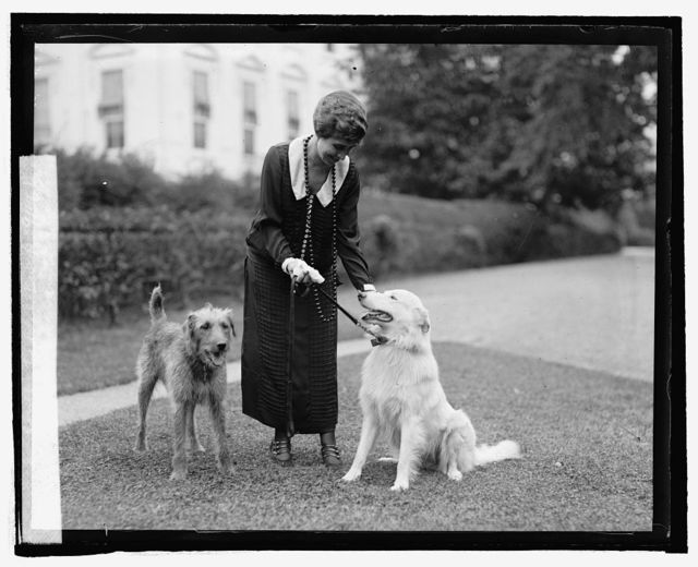 "Mrs. Coolidge with ""Rob Roy & Laddie Buck,"" 9/26/24"