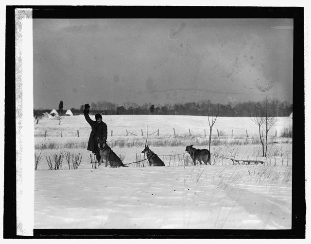 Mrs. E.G. Oberlin & dogs, 2/12/26