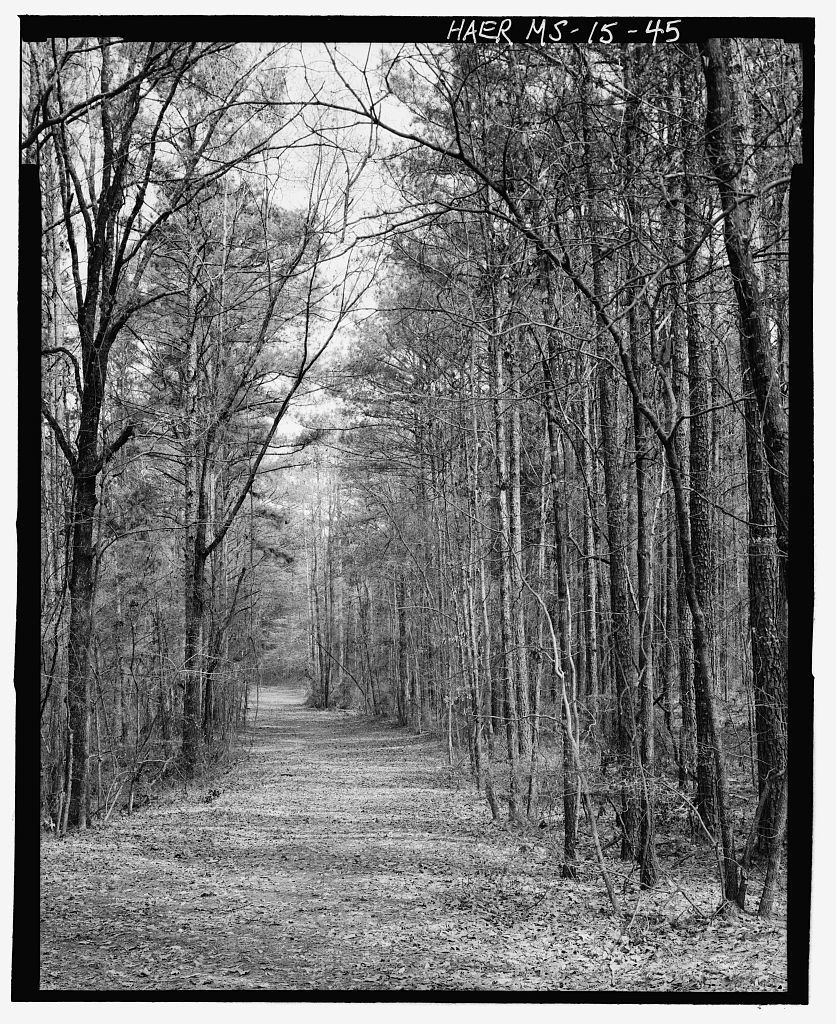Natchez Trace Parkway, Located between Natchez, MS & Nashville, TN, Tupelo, Lee County, MS
