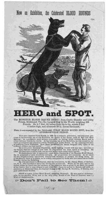 Now on exhibition, the celebrated blood hounds. Here and spot. the monster blood hound hero ... Don't fail to see them!.