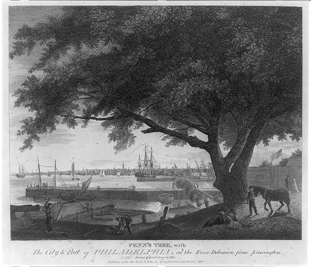 Penn's tree with city & port of Philadelphia, on the River Delaware from Kensington. Decayed and blow'd down in 1810