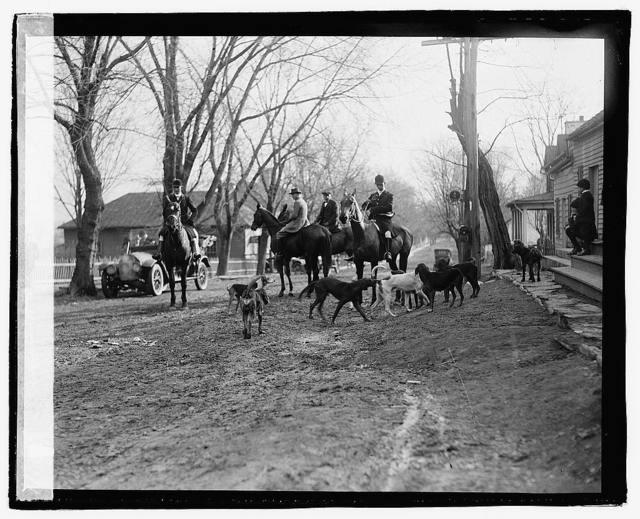 Piedmont Hounds, Upperville, VA, 1/3/21