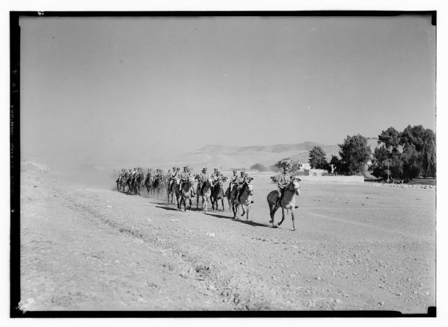 Royal Scots Greys, cavalry groups in Nablus. Cavalcade at a trot