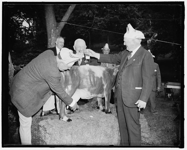 """Vice President enjoys milk from refillable bossy. Frederick, Md. June 4. The """"drinks"""" were on the house and they were milk, as Vice President Garner with other members of Congress enjoyed the annual Alfalfa Club outing today near. Left to right: Joseph E. Himes, who played host to the club; Rep. Bert Snell of New York, House Minority Leader; and Vice President Garner, 6/4/38"""
