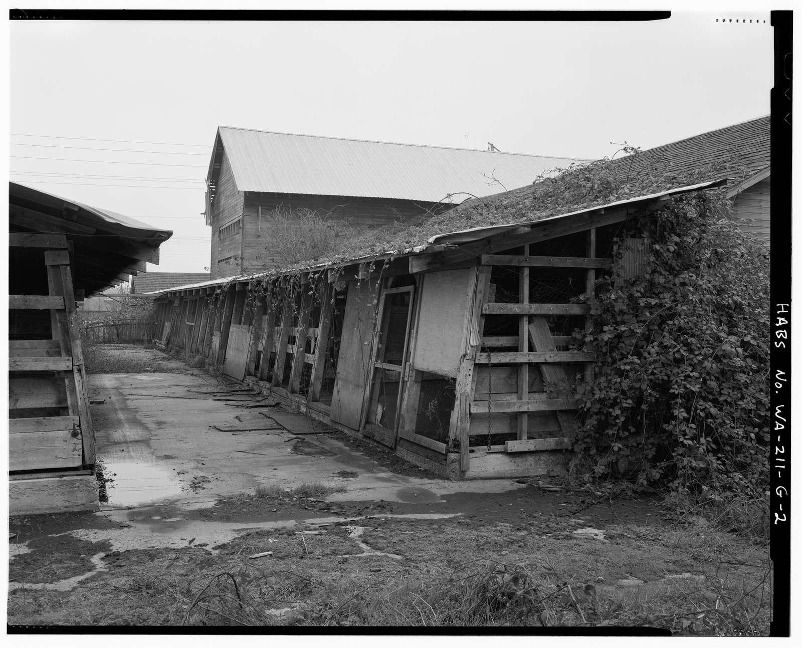 Kosai Farm, Feed Pens, B Street north of Northwest Twenty-ninth Street, Auburn, King County, WA