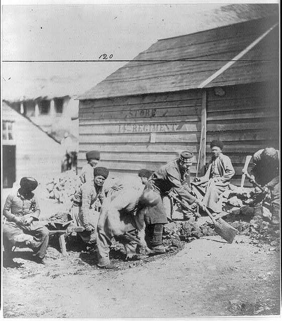 Tartar labourers