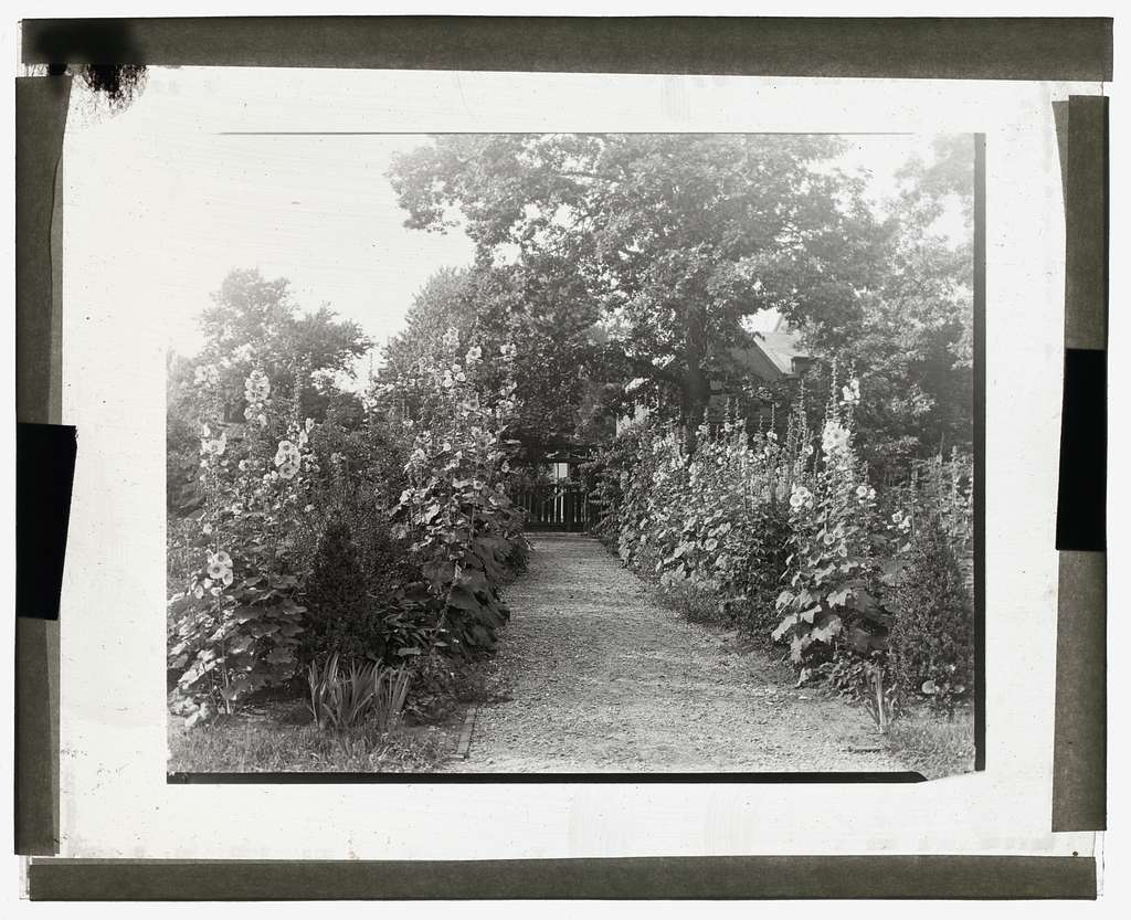 "[""Tudor Place,"" Armistead Peter, Jr., house, 1644 31st Street, NW, Washington, D.C. Pathway from house to gate]"