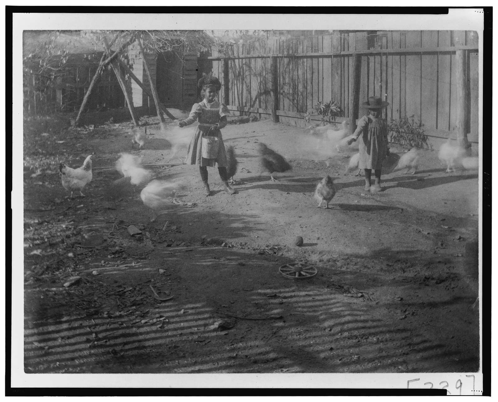 [Two African American children feeding chickens in a yard in Georgia]