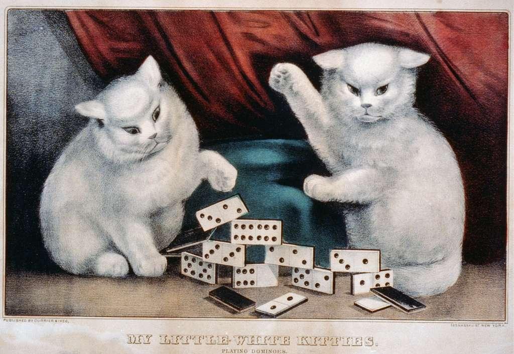 My little white kitties: playing dominoes