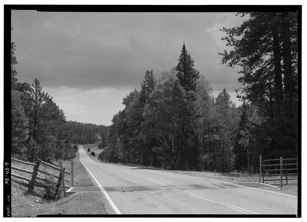 North Entrance Road, Between Little Park & Bright Angel Point, Grand Canyon, Coconino County, AZ