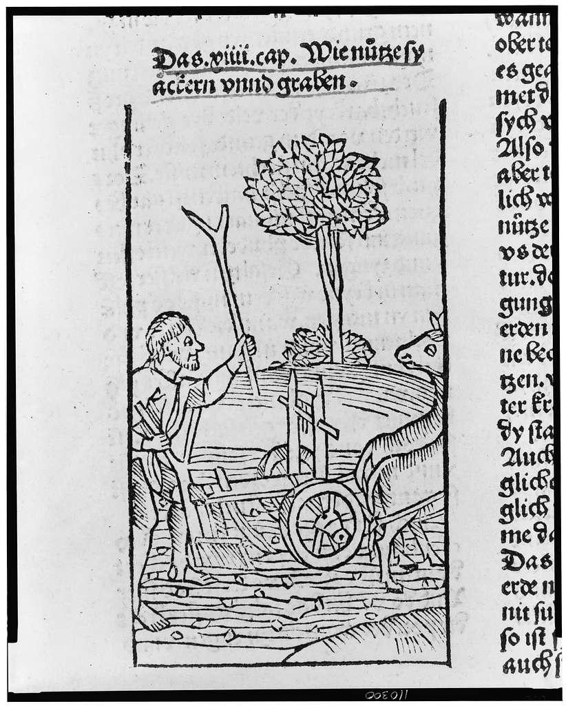 [A farmer plowing a field]