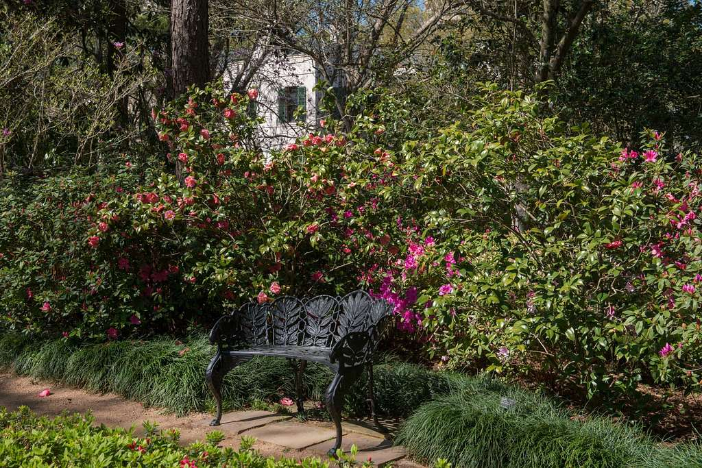 View Of Garden Bench And A Portion Of The Mansion At The Bayou
