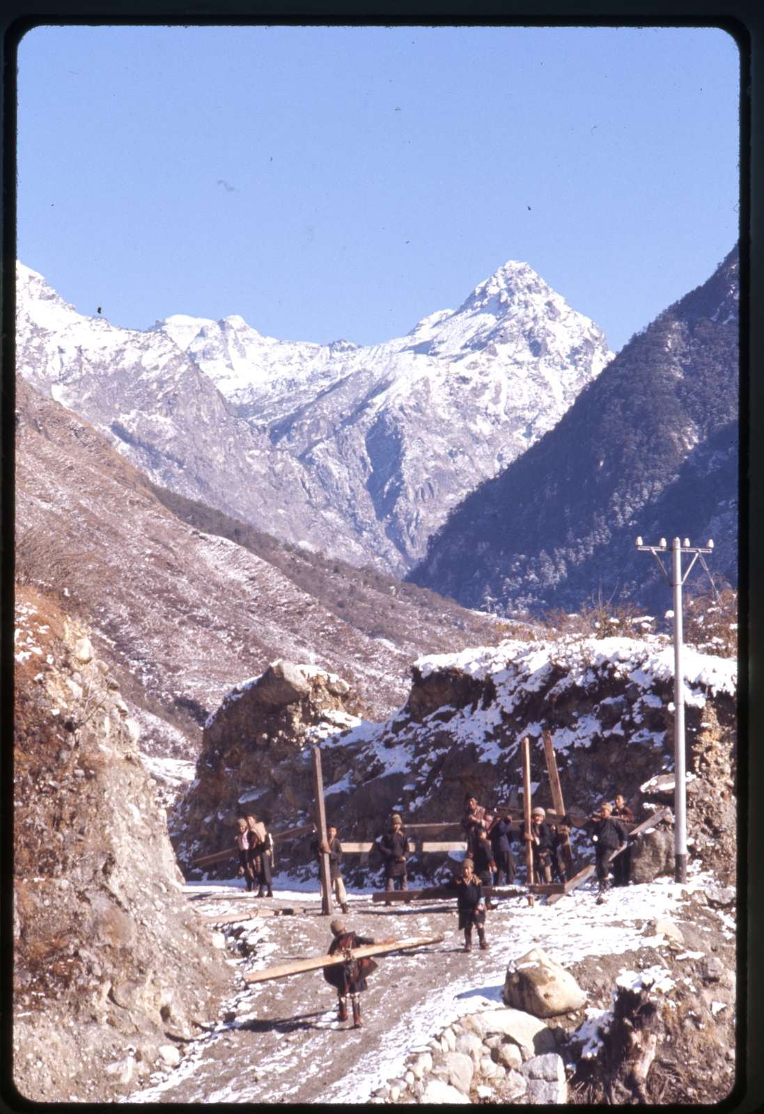 [Boys from Lachung carrying wood in the mountains, Sikkim]
