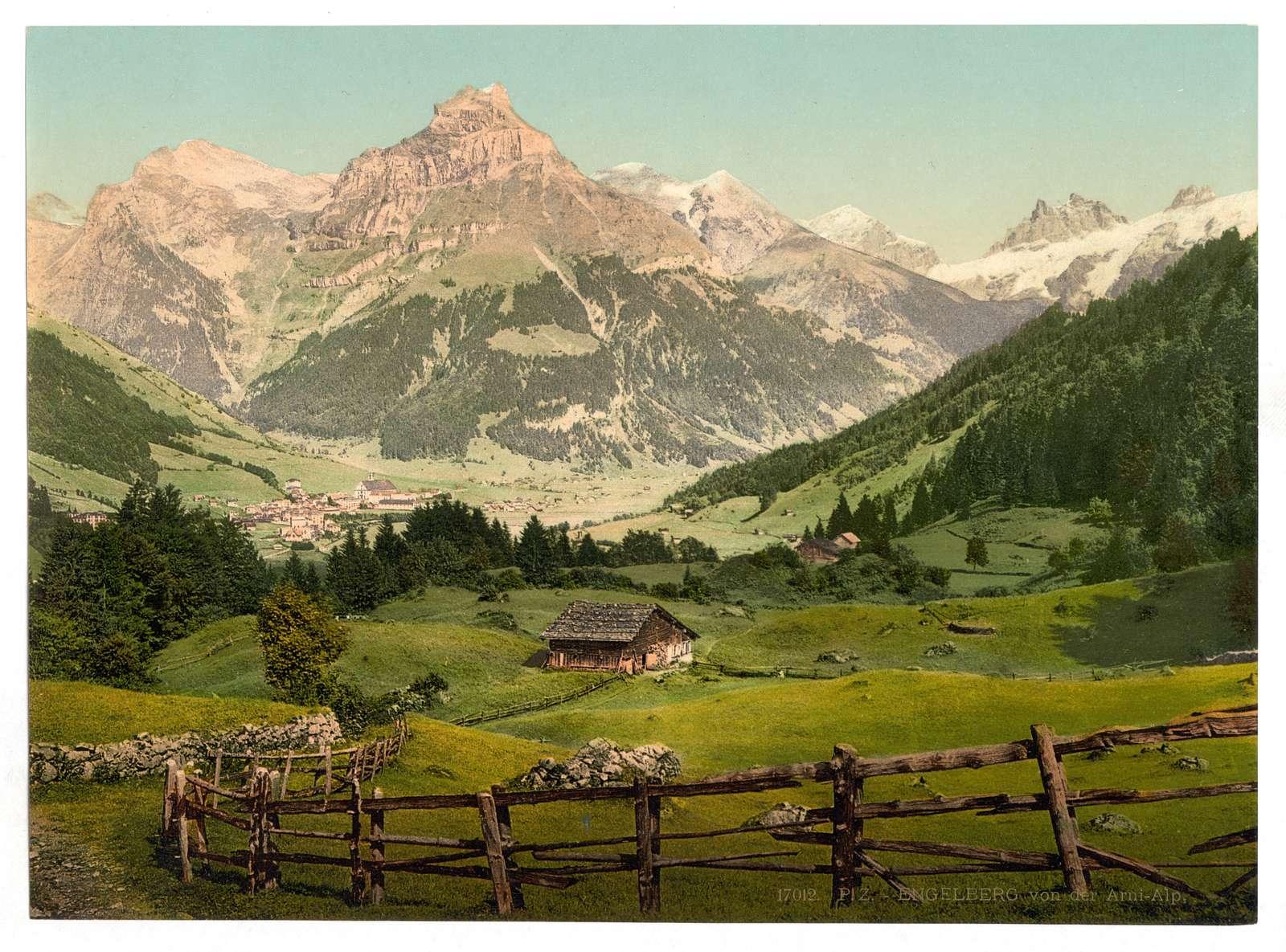 [Engelberg Valley, Arni Alp, Bernese Oberland, Switzerland]