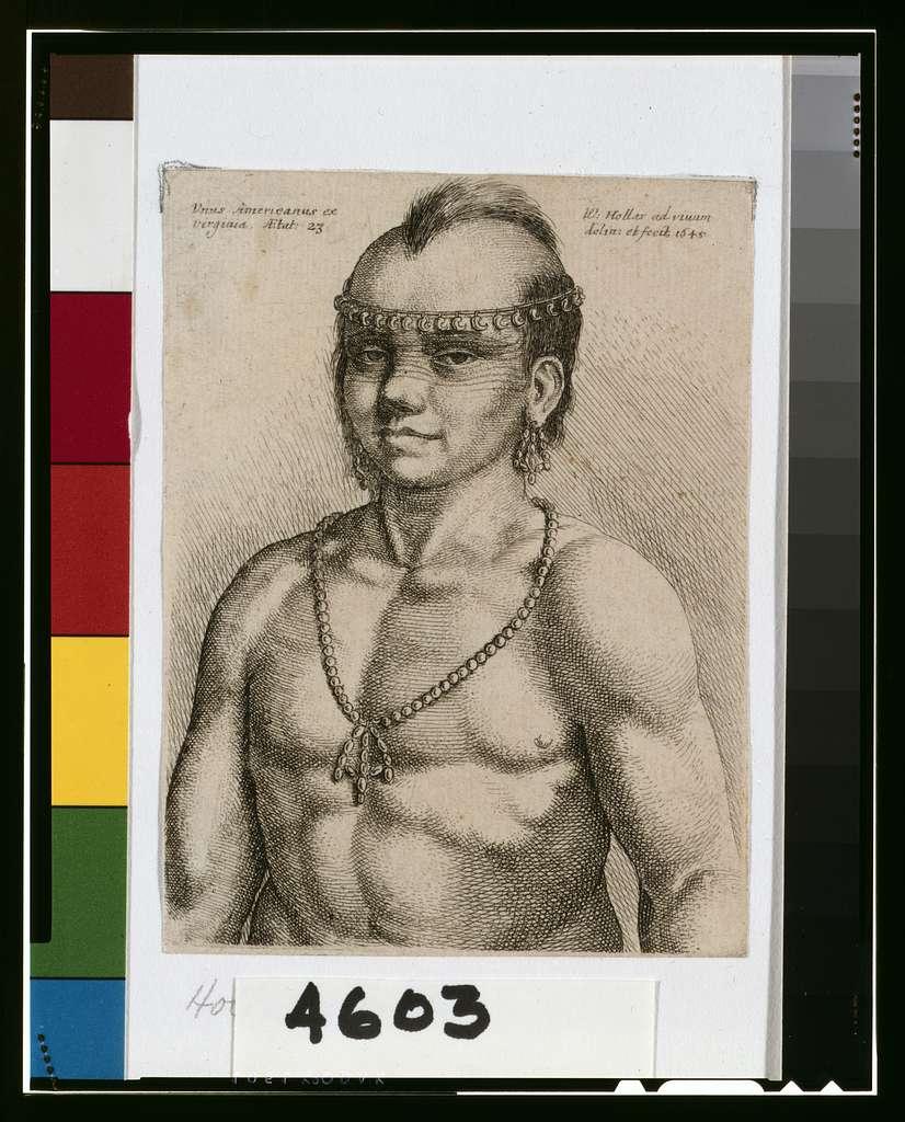 Unus Americanus ex Virginia. Aetat 23 / W. Hollar ad vivum delin. et fecit.