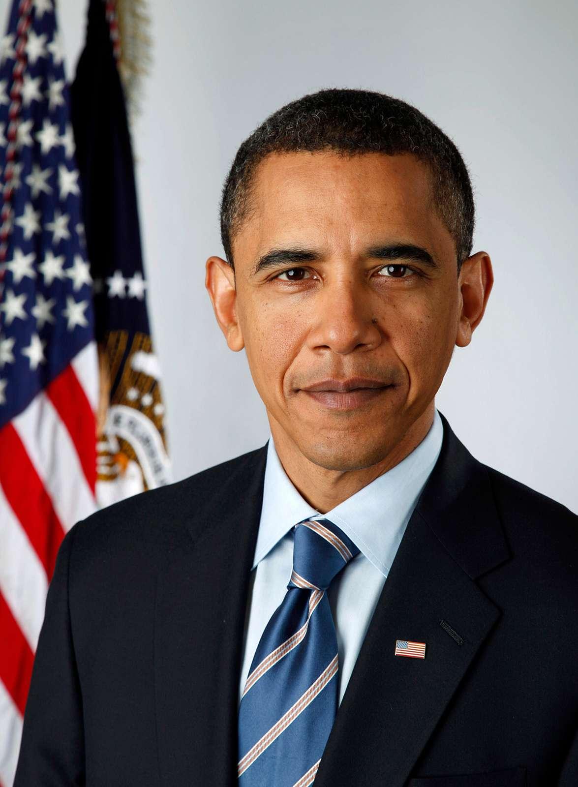 Official portrait of President-elect Barack Obama / Pete Souza.