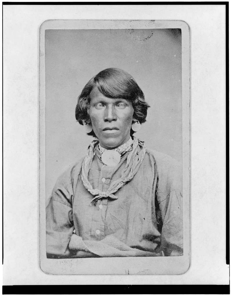 Native American Man Half Length Portrait Facing Front Picryl Public Domain Image