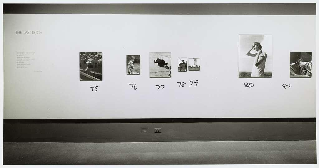 Museum Of Modern Art New York Exhibition