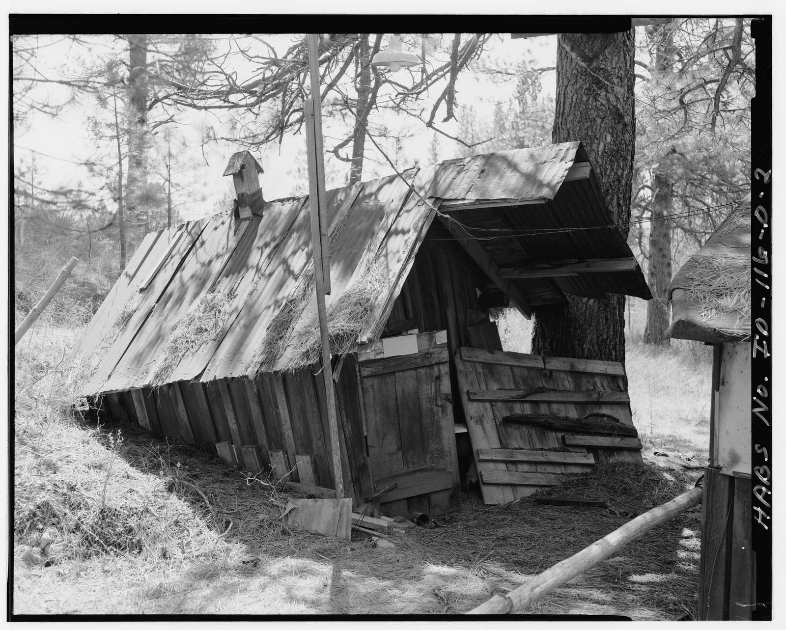 McKenzie Property, Root Cellar, North Bank of Sailor Gulch, 750 feet northwest of intersection of U.S.F.S. Roads 651 & 349, Placerville, Boise County, ID