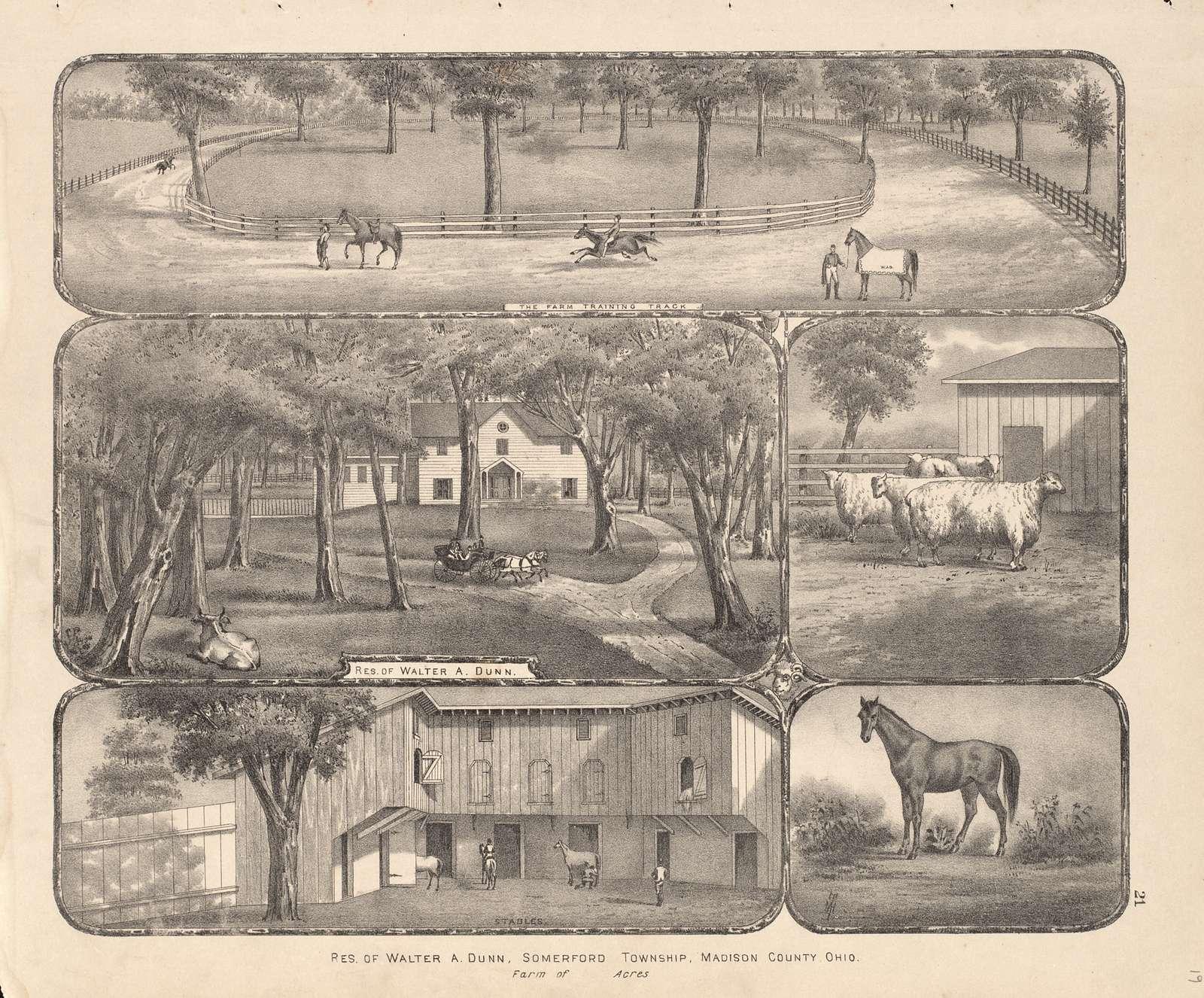 Caldwell's atlas of Madison Co., Ohio /