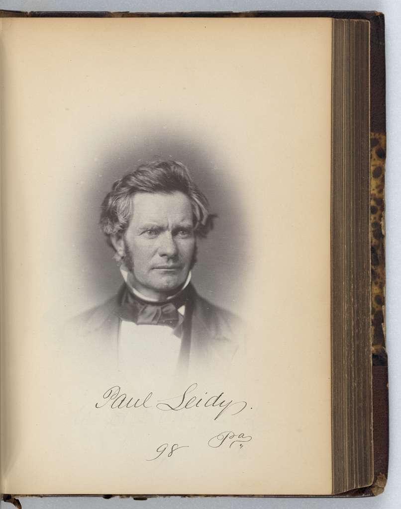 [Paul Leidy, Representative from Pennsylvania, Thirty-fifth Congress, half-length portrait]
