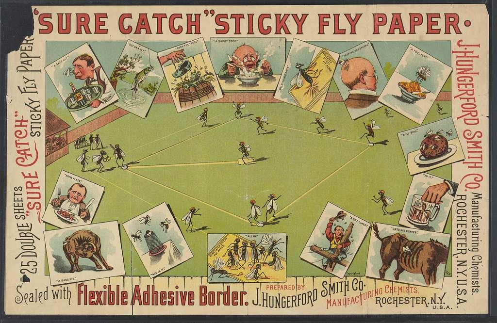 """""""Sure Catch"""" sticky fly paper"""