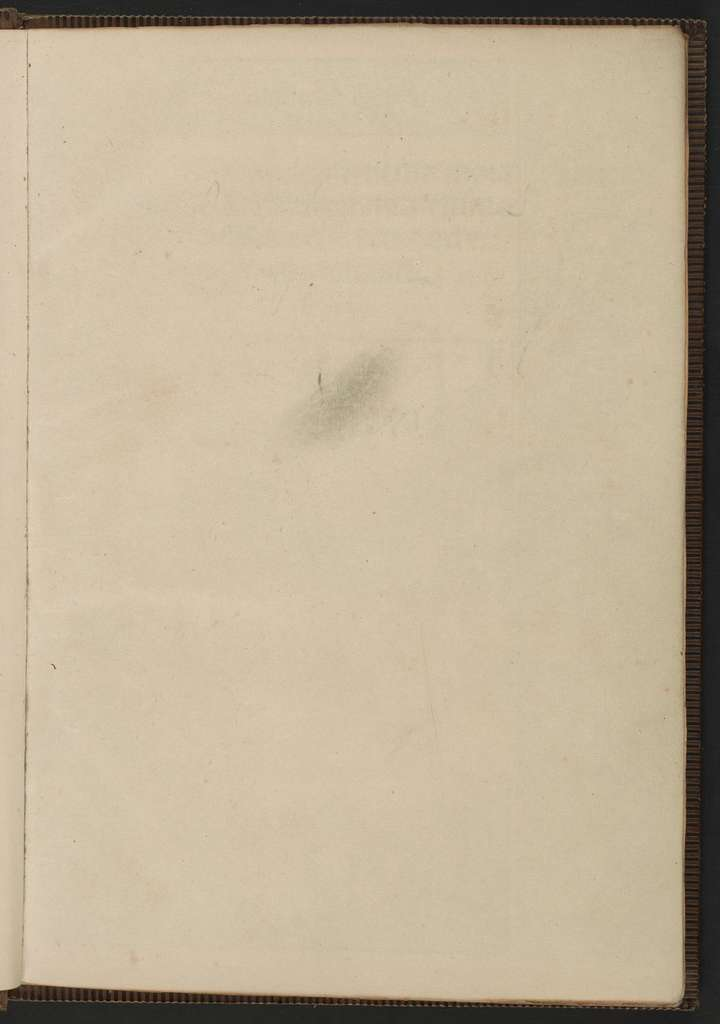 Esopus constructus moralicatus