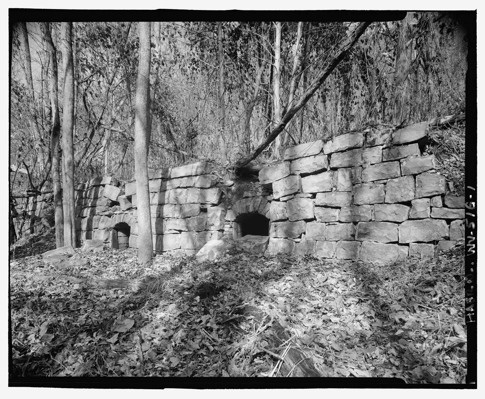 Nuttallburg Mine Complex, Coke Ovens, North side of New River, 2.7 miles upstream from Fayette Landing, Lookout, Fayette County, WV