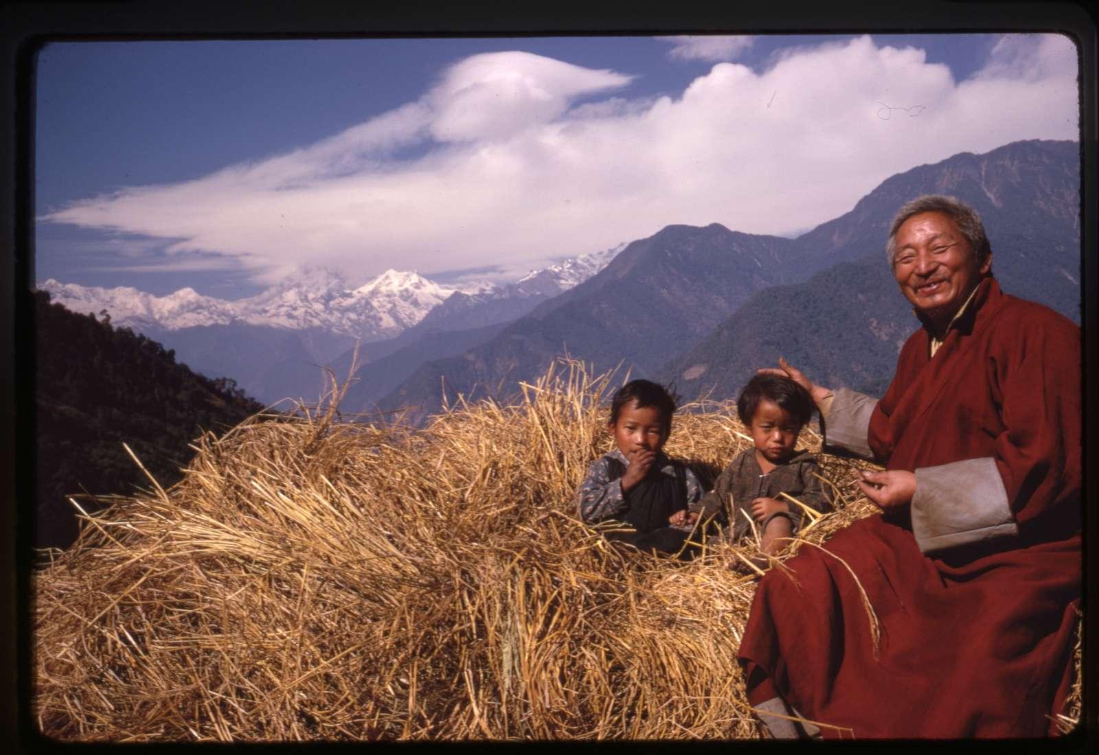[Shinglay Lama and grandchildren sit in haystack near Singhik,Sikkim]