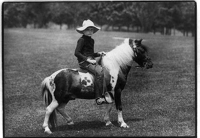 [Archie Roosevelt on pony]
