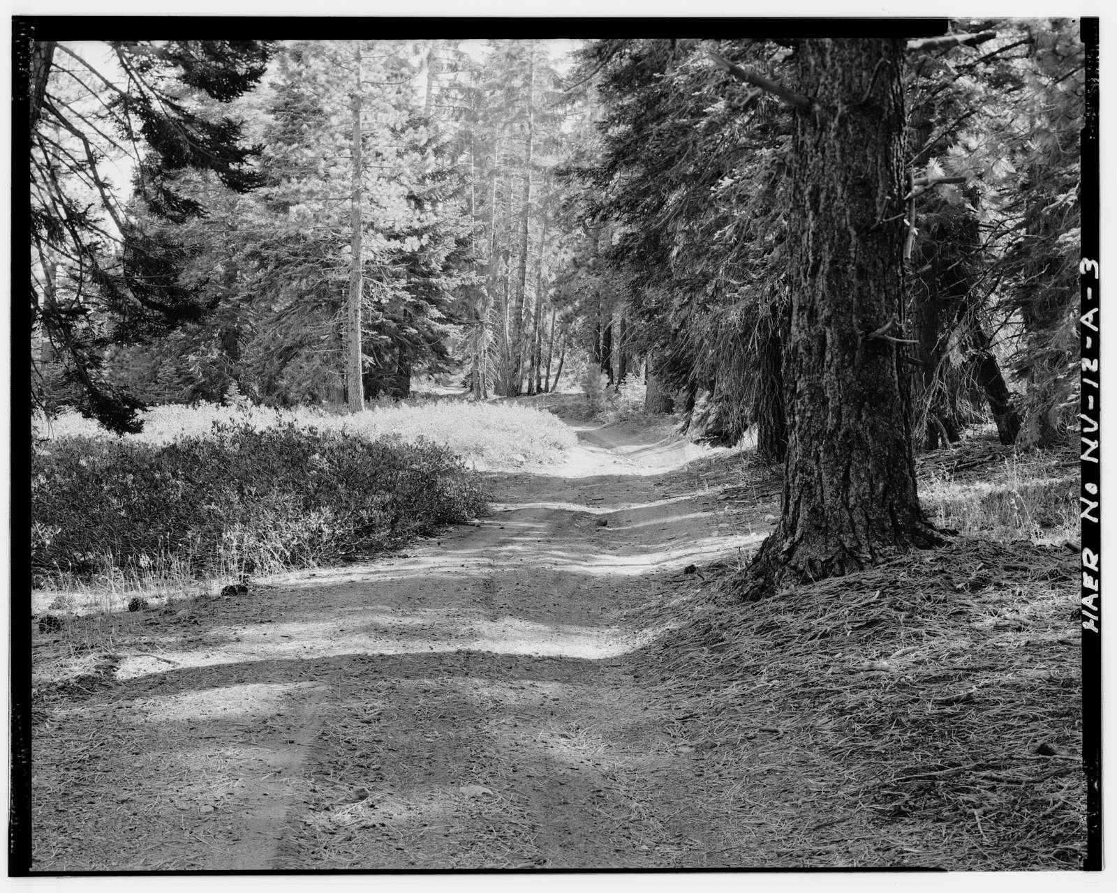 Genoa Peak Road, Spur, Glenbrook, Douglas County, NV