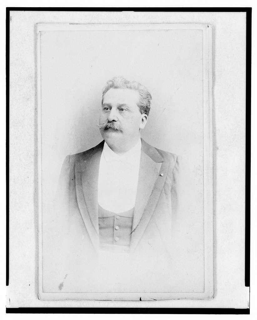 [Mayor Duceux, of Saint-Dié-des-Vosges, half-length portrait, facing left]