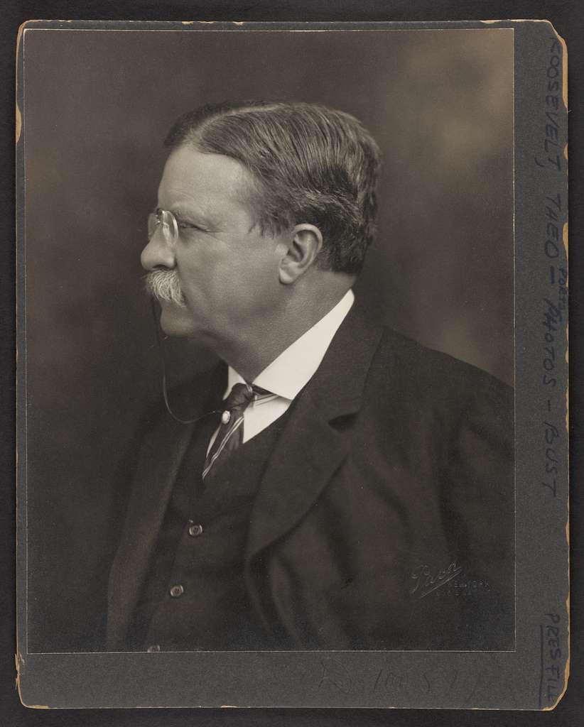 [Theodore Roosevelt, head-and-shoulders portrait, left profile] / Pach, New York.