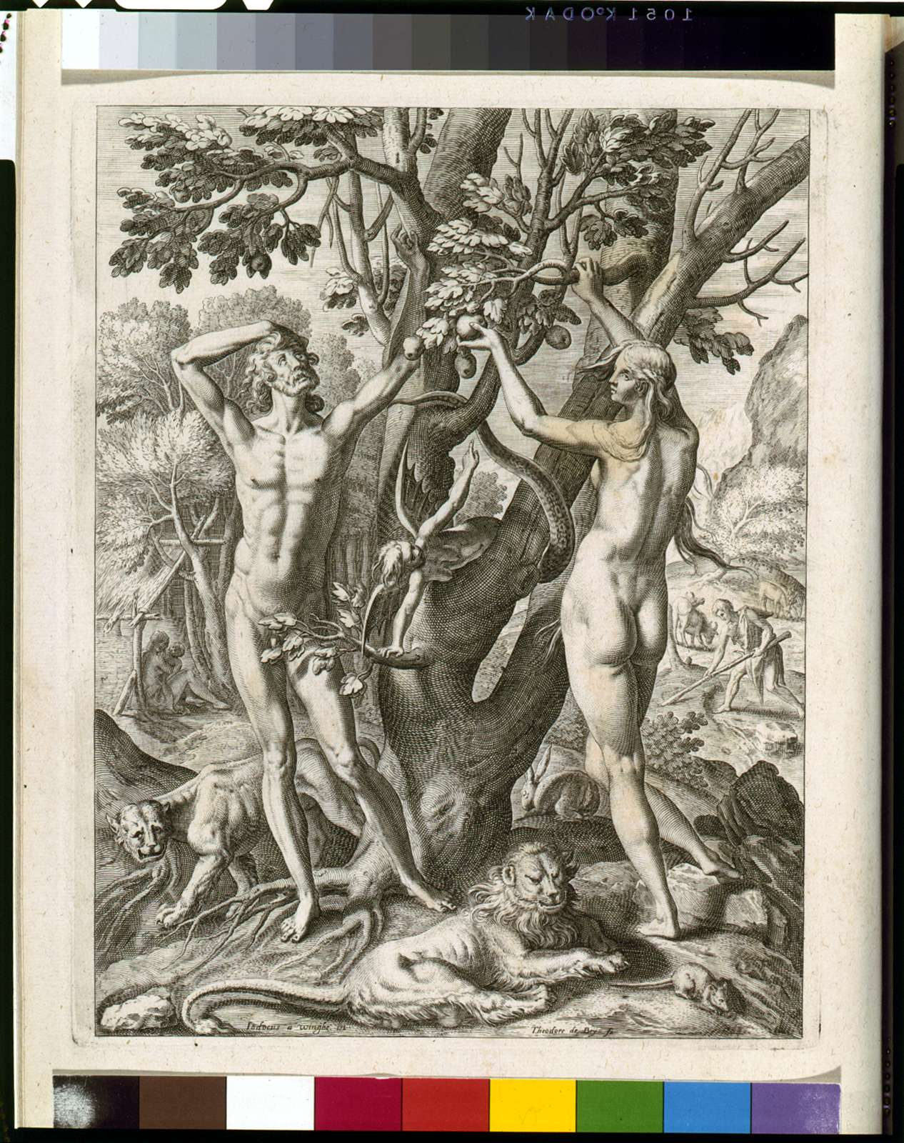 [Adam and Eve in America]