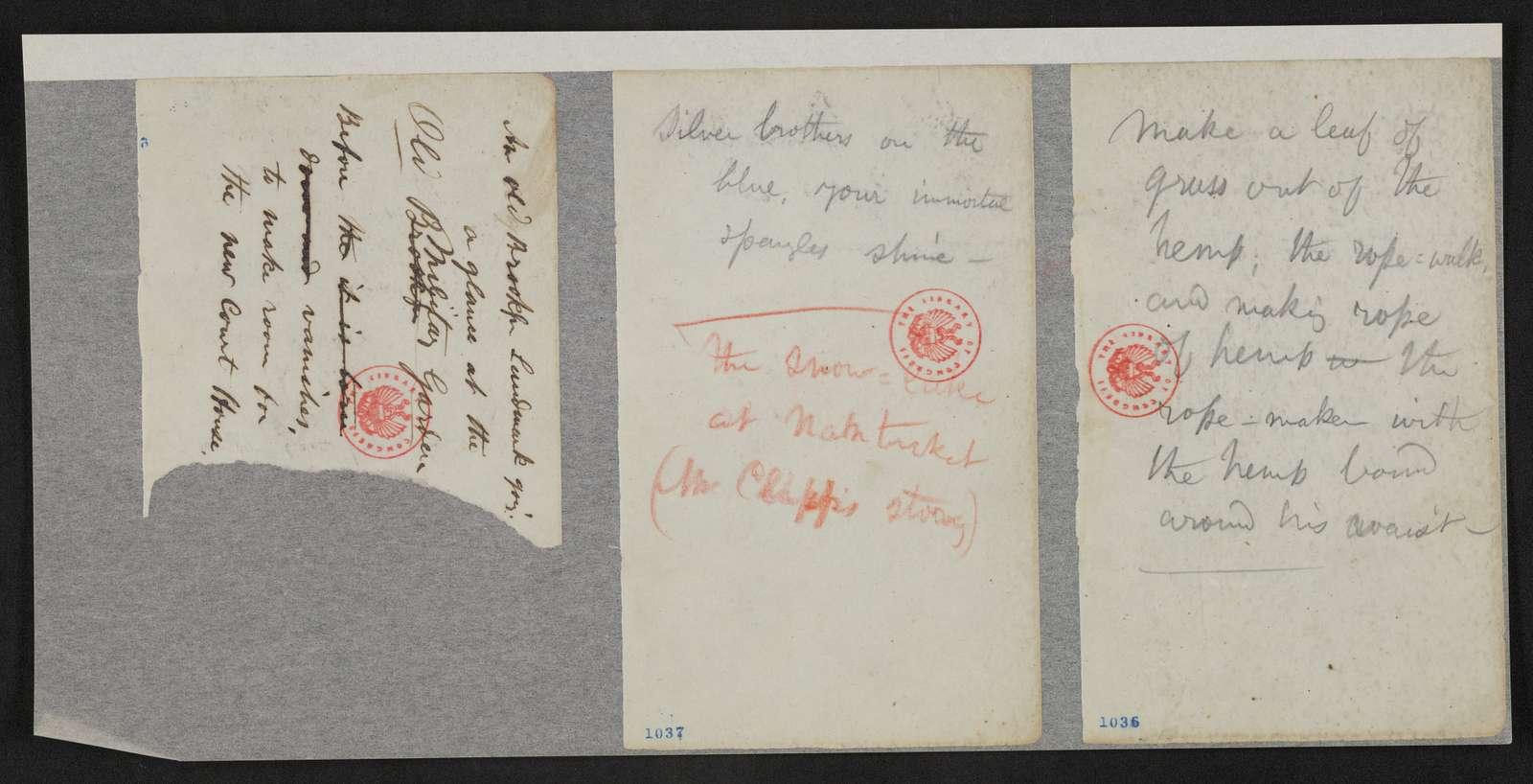Thomas Biggs Harned Collection of the Papers of Walt Whitman: Notebooks, 1847-1885?; 1862?; New York City notebook