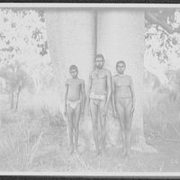 Kings [sic] Sound - aborigine man, woman, and boy in loin-clothes, standing against large trunk of tree