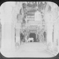 Madura - cow grazing in the hall of a thousand columns, Temple of Siv