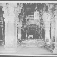 Madura - cow grazing in the Hall of a Thousand Columns, Temple of Siva