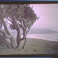 Carmel Bay, California