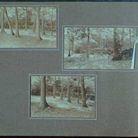 Early years, with images of family, self portraits, landscapes and architectural interiors. Forest, Schroon Lake area