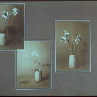 Early years, with images of family, self portraits, landscapes and architectural interiors. Still lifes of flowers I