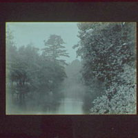 1917-1918, reference prints from negatives. River or lake with pine tree on right, horizontal
