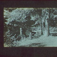 1917-1918, reference prints from negatives. Wooded area with bridge and statue