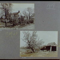 Reference prints, 1919-1920, numbers 2133-2377. House from rear through trees; Barn and leaning tree