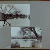 Reference prints, 1919-1920, numbers 2133-2377. River or lake bordered by tree with three trunks on left; View of river or lake, to field