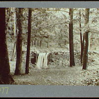 Reference prints, 1919-1920, numbers 2133-2377. Waterfall over rock dam in wooded area