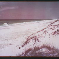 Beaches. View of beach and dunes II