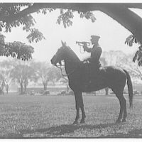 Bugler. Mounted artillery bugler